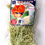 乾燥パパイヤ 通販 干し野菜 ドライ 国産 無添加 ネット注文購入