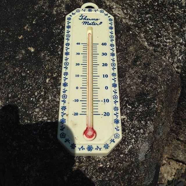 今日も高温過ぎです!温度計が割れたのは初めて見まし...