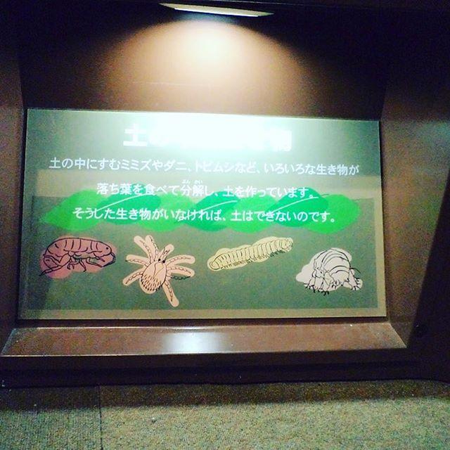 子供に教えてほしい畑の土作りは、名古屋市科学館のパ...