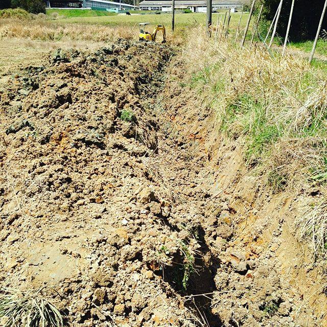 サックと、2メートル45センチほどを掘ったから 昼ごはん食べて次の作業