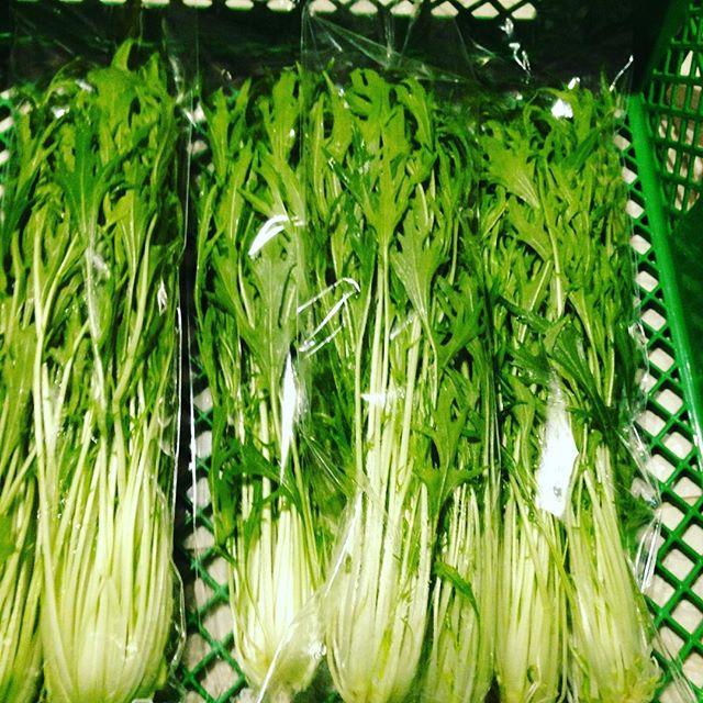 サラダ水菜です!うちの場合は、この様に、袋をコンパクトにした物を利用してます!水菜の水分が極力飛ばない様にしてるからです!水菜を炒めたりできる種類と、サラダに適してる物があるので、食べたらごわごわしているのは、炒めたり、おひたしに向いてますよーうちは、サラダ水菜と、赤い水菜を作ることが、多いです!