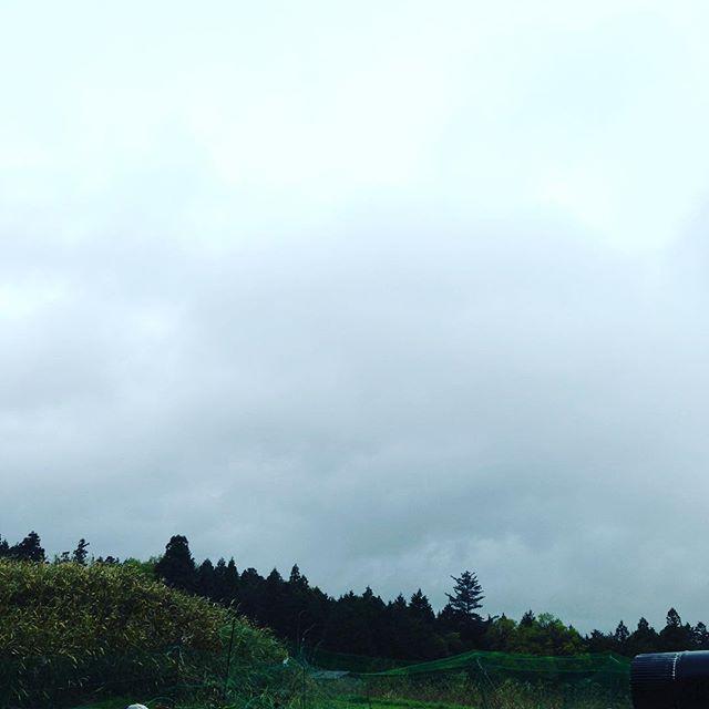 平成は、今日で最後ですね!涙雨 この雨は降水量が多い