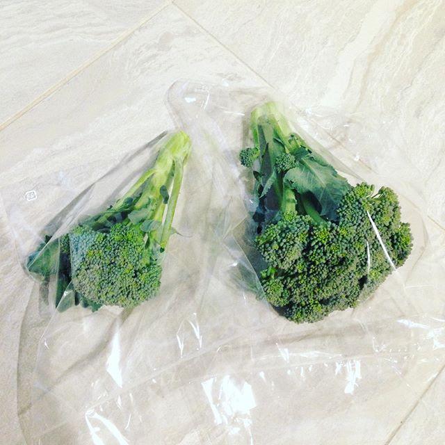 ブロッコリーの袋に詰めてます!さて、貴方は大きいブロッコリーと、小さいブロッコリーどっち選びますか?小さい方が、高いです!