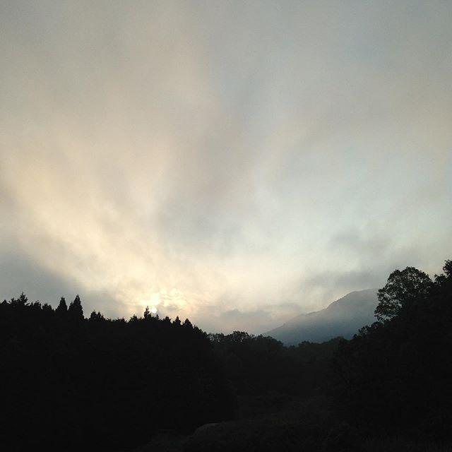 昨日の朝は、10℃今日は朝から14℃で、安定してきました!