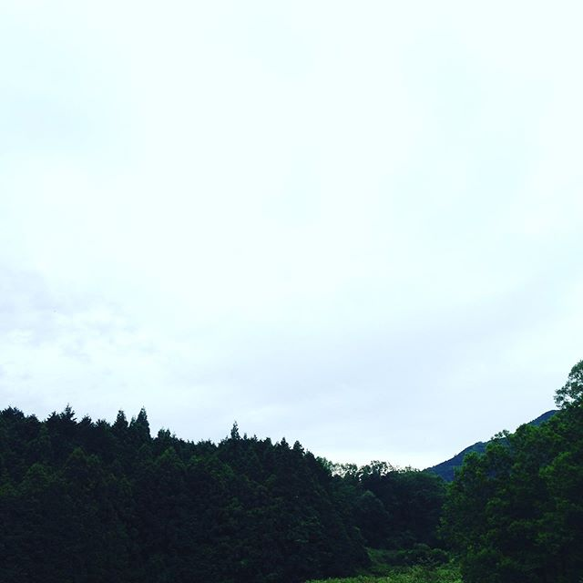 今日は、現在雨が降り出しました!