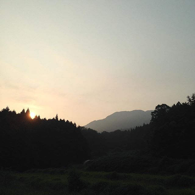 本日も暑い朝の始まりですねー台風が近づいてきてる様です。