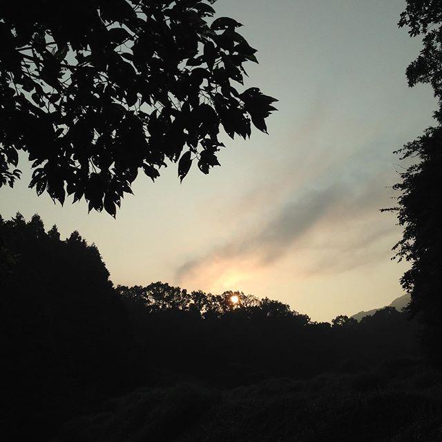 夏は暑いのは当たり前ですが、今日も太陽が昇ってきました!