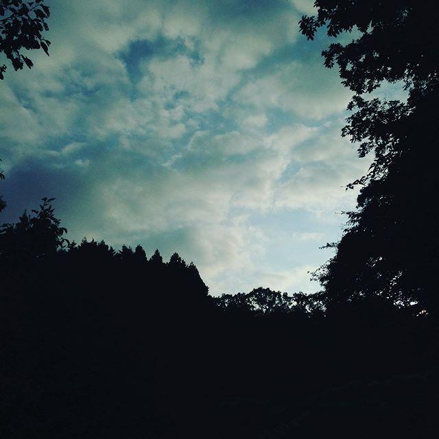 薄雲がありますが、気温は、昨日と同じ25℃スタート