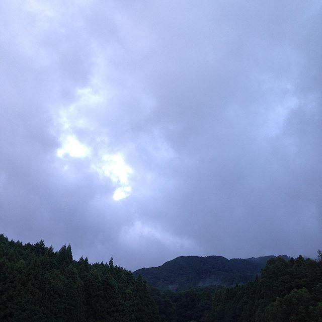台風の影響でしょうか?弱い霧雨が降ってます!気温24℃風は吹いてないですが予報では日中は気温が上がるそうです。昨日に続き今日もたくさんの方が来られてます。今日も収穫します。