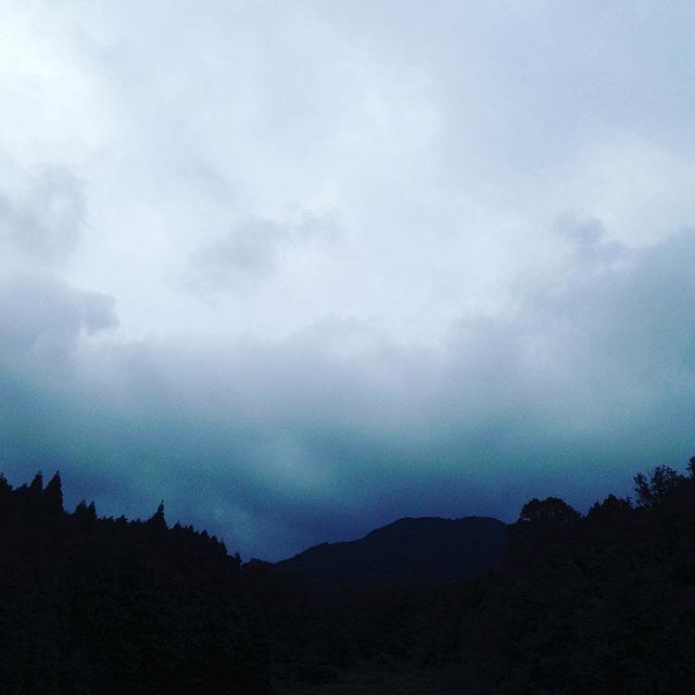 霧雨が多少あるものの曇りで、風は、東南方向で、涼しいです!夏野菜から秋に