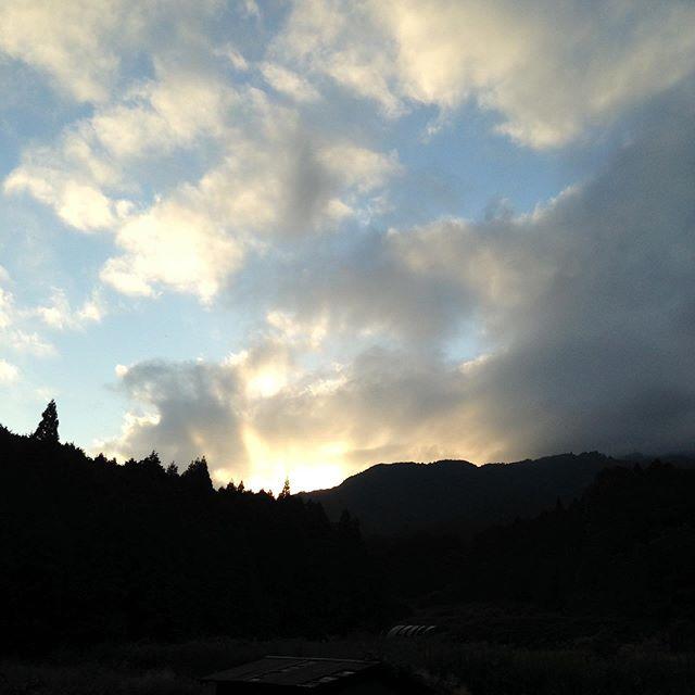 雲が多い20℃の朝の収穫からスタートです!いよいよ来年の準備が、本格的に始まります。