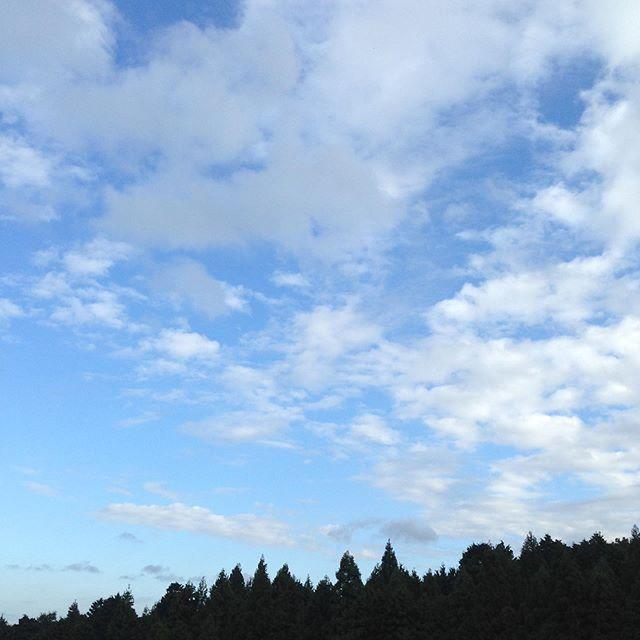 気温14℃と空気が、冷んやりしてます!今週は、11℃台まで下がりそうですが、台風が猛烈と予報ですので懸念してます。