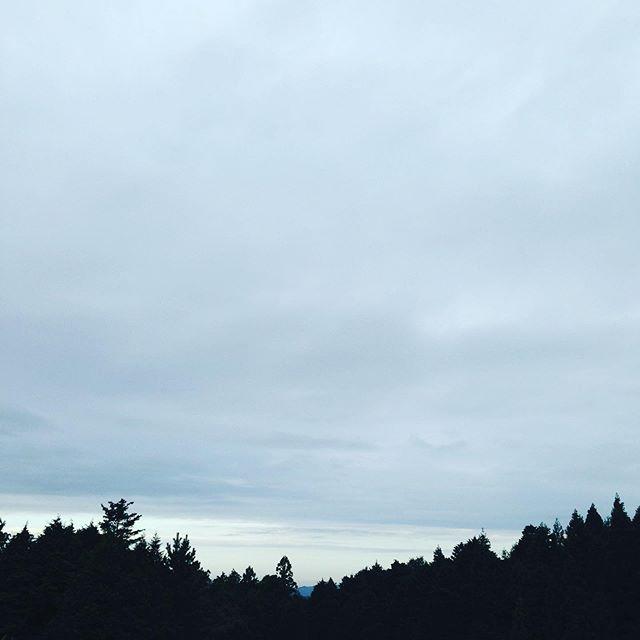 曇りで、午後からは雨が降る予報です!気温15℃の体感は昨日より少し上がりました。