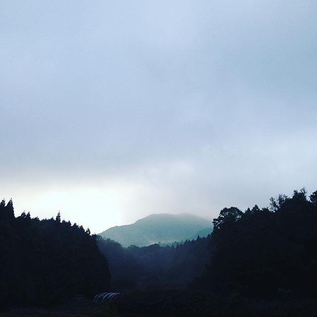 気温14℃畑はゆっくりと雲が下に降りて行って雲海が見れる朝です!穏やかな秋の空になりそうです!
