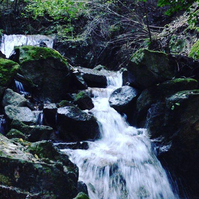 畑の水は、この山から流れた水で育ってます。昔から七水口と名前の畑です