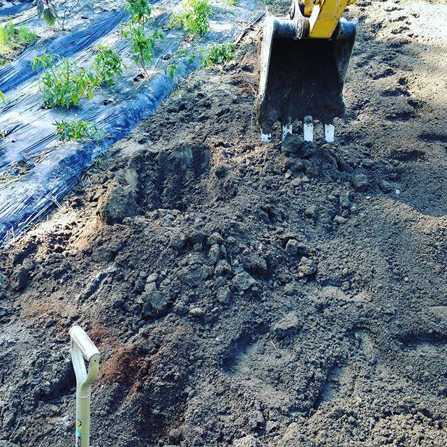 新しい農業空間作りしてます。