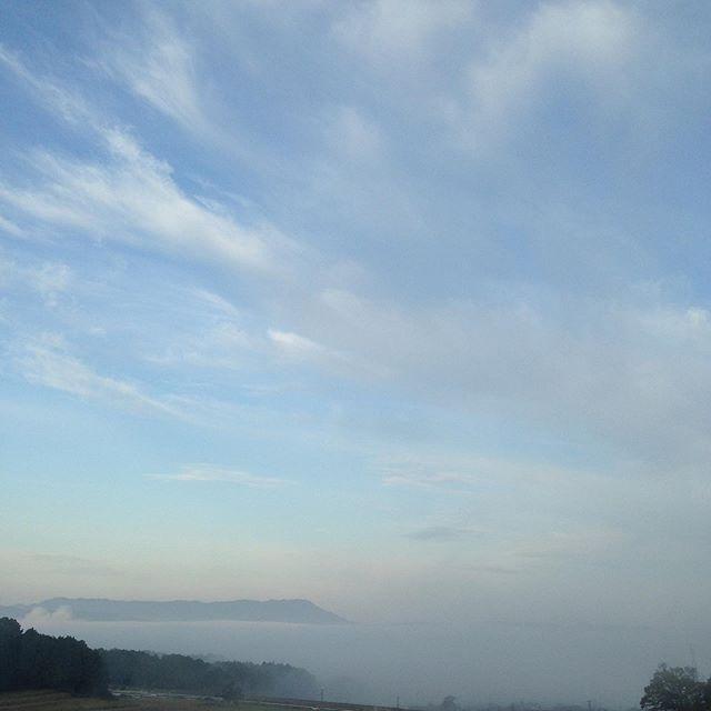 気温8℃まで下がり1℃更に下がり霧が濃い天空になってます。
