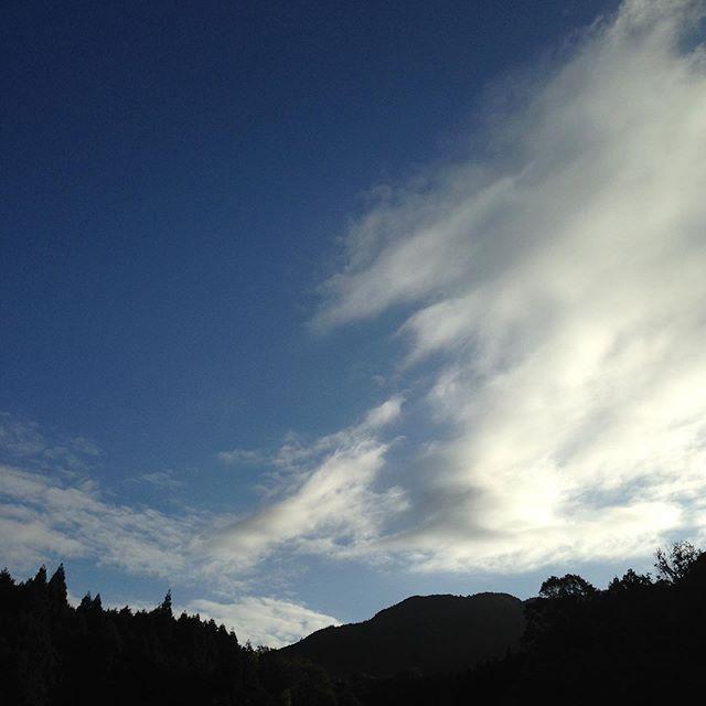 秋晴れの気温は7℃です!太陽が傾いて日照時間も少なくなって来ました。
