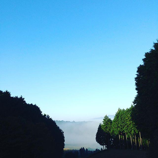 気温3℃まで下がり寒く空間天空になった朝です。