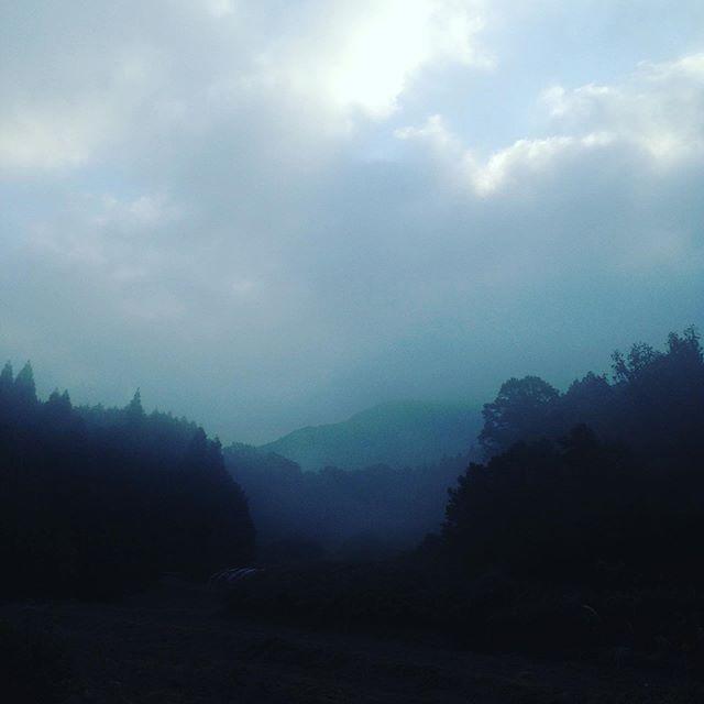今日も霧が濃いので天空になってます!気温9℃日中は気温が23℃?