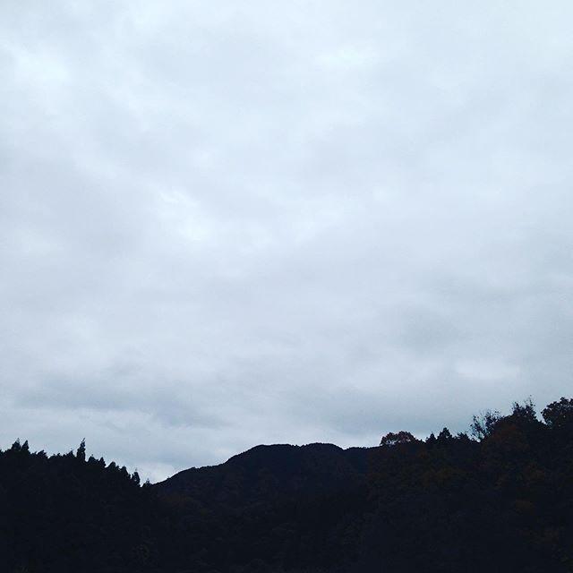 気温7℃風はありませんが天気は崩れ雨の予報です!11月に台風は過去ありますので何も影響なく師走を迎えたいです!