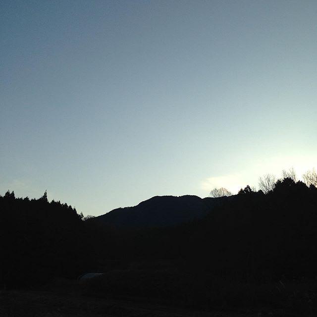 気温4℃晴れの朝です!霜がおりて更に夜明け前は寒かった様です。