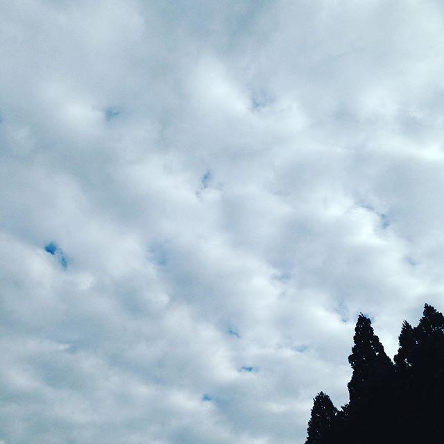 曇り始めました!高い位置にウロコ雲があると雨が予想が、出来るそうですね!次に厚めの低い雲が現れ次第に曇り空で雨が降るそうです!天気図の読み方は、ウェザーニュースの方に直接教えてもらいましたので理解しやすかった!