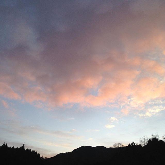 昨夜は、雨が降りましたが現在は雲が多いが晴れ4℃の朝です!