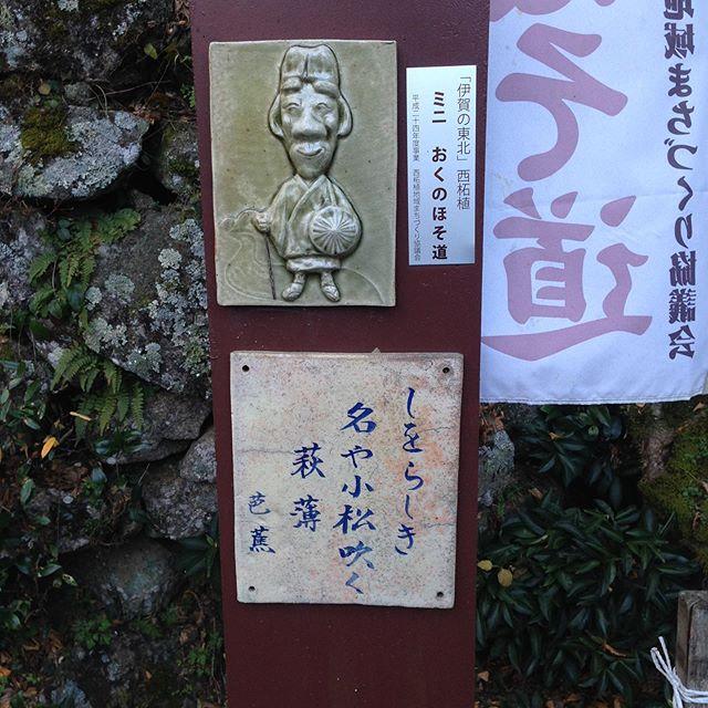 当農園のすぐ上に桜でも有名な霊山寺があります!