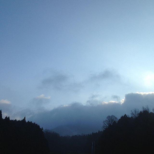 気温4℃霧曇り西北の風昨夜しっかり雨が降って土は濡れてます