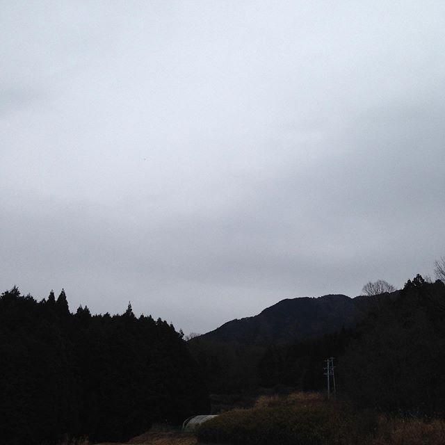 気温6℃東のバラバラと雨が降ってます。風は東から吹いてる感じで今のところ微風です!