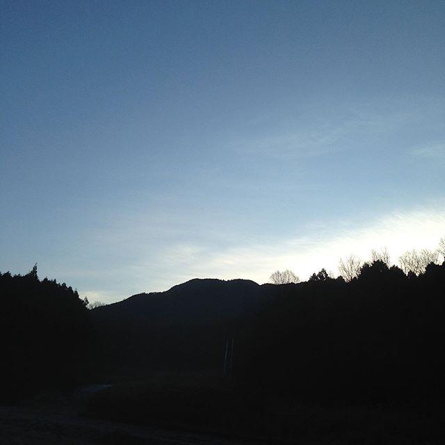 最低気温−1℃現在0℃腫れですが、畑より低い場所は濃い霧で天空状態て風はなく冷たい朝です。