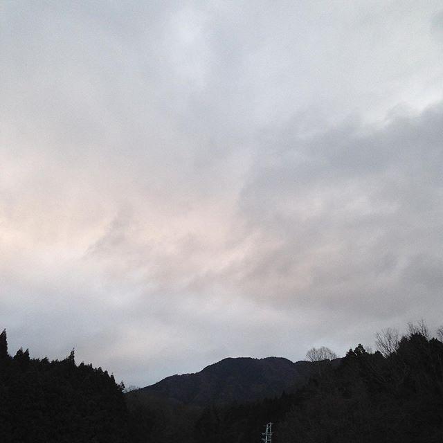 気温5℃どんより曇りと暗い感じで、北よりの風が吹いてます!