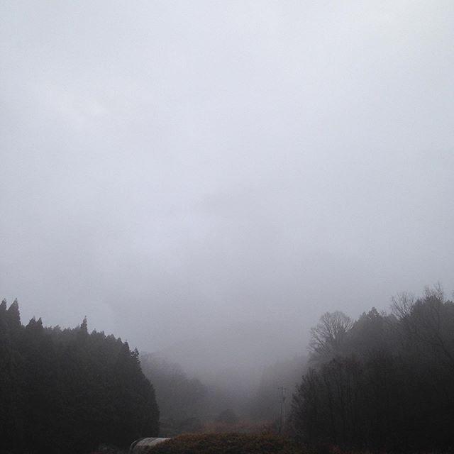 気温5℃6時から本降りでしっかりと雨が降ってます!霧も濃く暗い感じです。
