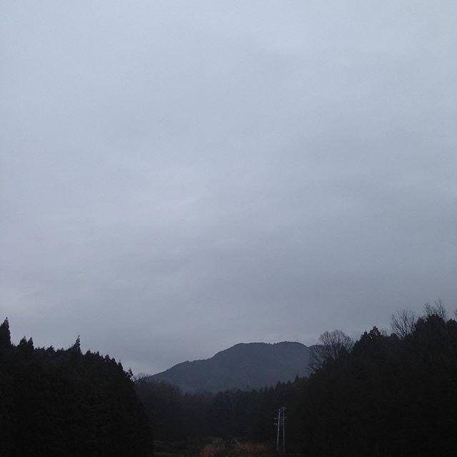 気温6℃風は無く曇りで霧がかかってます。昨日の雨で畑は濡れてます。