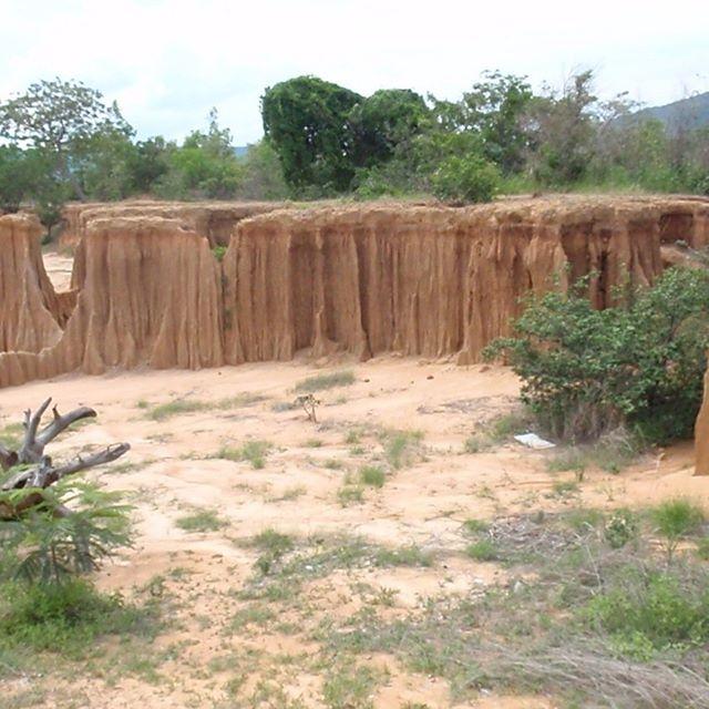 周り田んぼがあるタイのサケオのラルと言う名前の場所で、カンボジアに近い所土は赤土ですが、これは長年の風化によって今も風化は続いてます!私の土作りに参考になってます!カチカチの土を畑にするには?粘土鉱物をどうしたら使える様になるか?などなどですね〜腕がパンパンになるくらい手掘りで経験はした方が良いです!