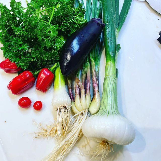 作業が終わり、試し取りや間引き野菜で夕食を考えます。