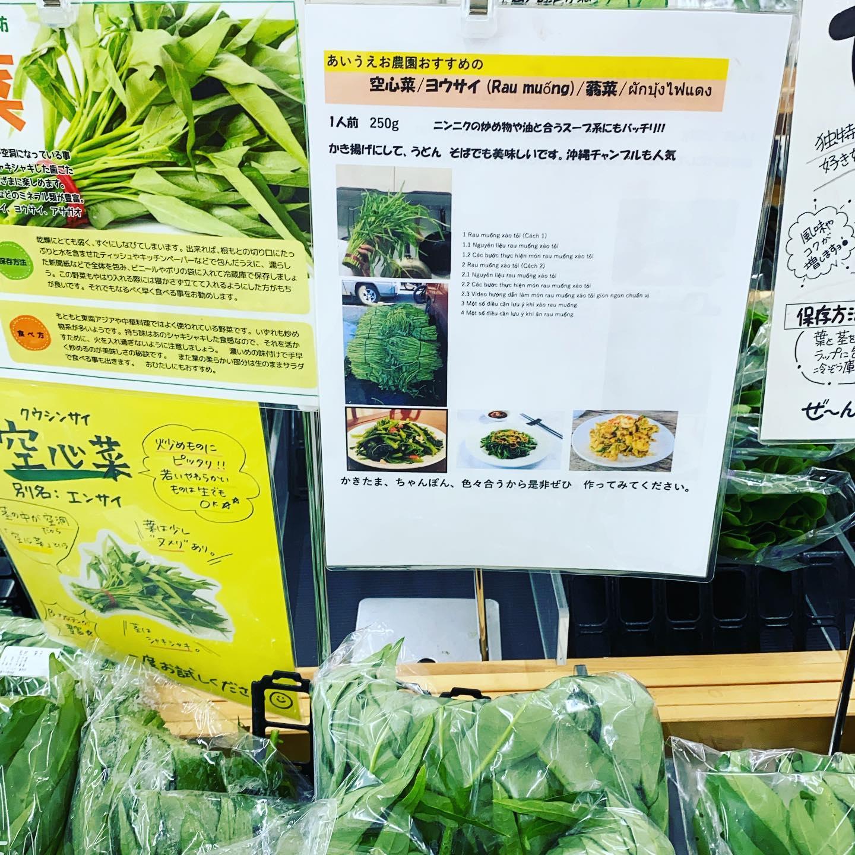 人気野菜!レシピ紹介は、お店にありますよ空芯菜