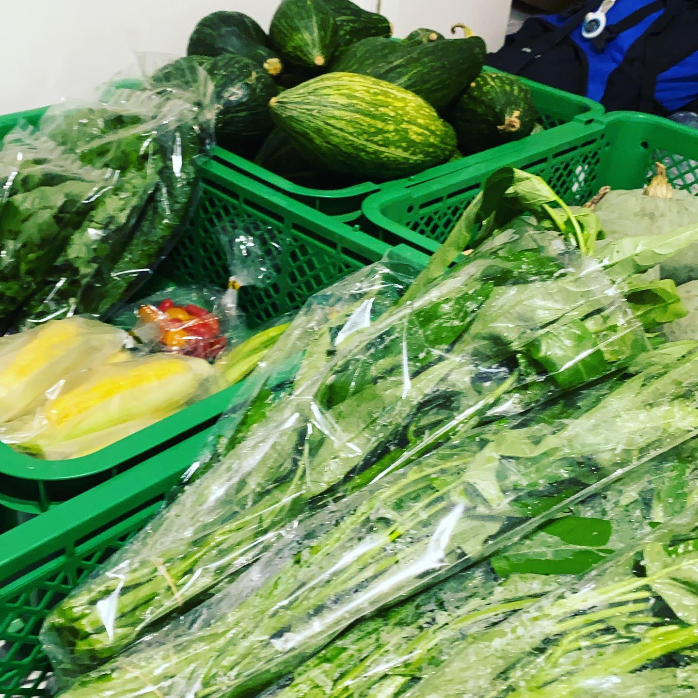 夏野菜、夏休み、お盆、秋の収穫に向けて梅雨明けしたらやること満載です。体調管理は、しっかりと管理 青空見えてきました。
